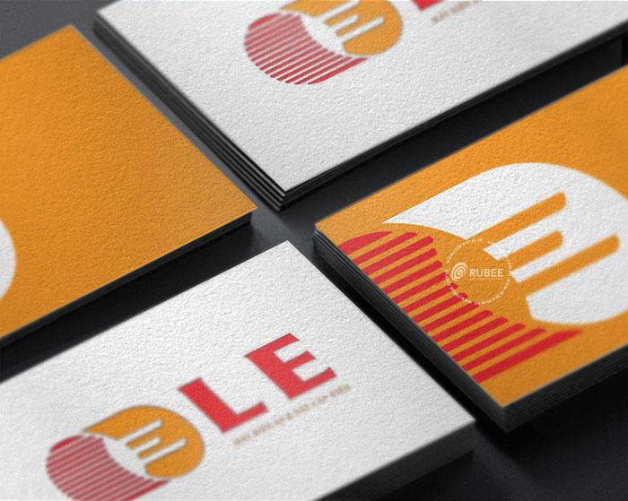 Thiết kế logo công ty thiết bị điện LE