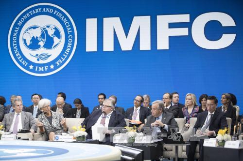 thiết kế imf logo