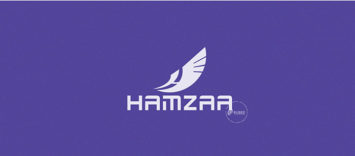 Thiết kế logo công ty Hamzaa